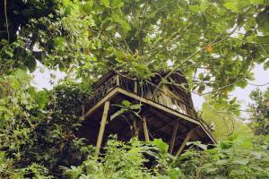 Tree House @ Ijen Shelter