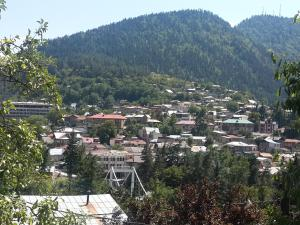 Borjomi Townhouse, Alex, Apartmány  Borjomi - big - 5