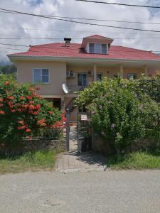 Гостевой дом на Апсны 15, Гагра