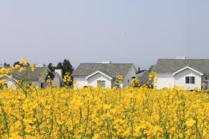 Jeju Skyline Pension, Dovolenkové domy  Jeju - big - 9