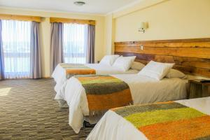 Hotel Entre Tilos, Hotels  Valdivia - big - 15