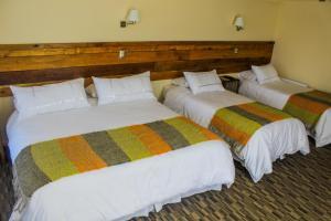 Hotel Entre Tilos, Hotels  Valdivia - big - 16