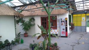 Rastlinky.sk Garden Centre Reed Guestrooms