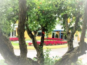 Hotel Terme Salus, Hotels  Abano Terme - big - 43