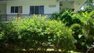 Unawatuna Apartments, Apartmanok  Unawatuna - big - 127
