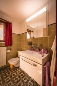 Chalet Adler - Apartment - Wengen
