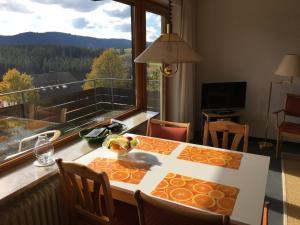 Feldbergblick Appartement - Holzschlag