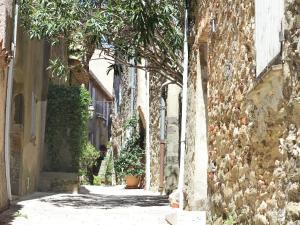 Chênes Verts, Holiday homes  Grimaud - big - 15