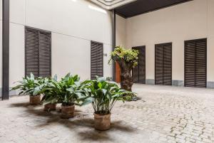 El Corral del Rey a 1min de la Catedral, Appartamenti  Siviglia - big - 23