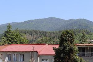 Apartment Komfort, Apartmány  Borjomi - big - 7