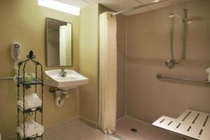 King Room with Roll-in Shower - Disability Accesss