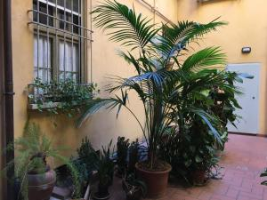 Casa Klara, Апартаменты  Болонья - big - 21