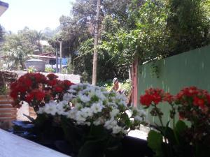 Hospedaria Bela Vista, Homestays  Florianópolis - big - 36