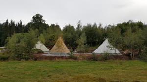 Bjørkeskogen Luxury Tents
