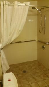Queen Bed/Accessible - Non- Smoking (Walk-In Shower)