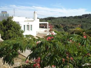 Villa Paradisos, Case vacanze  Archangelos - big - 30