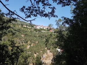 Immerso nel Verde - AbcAlberghi.com
