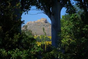 La Casa Grande de Quintanas de Gormaz, Affittacamere  Quintanas de Gormaz - big - 32