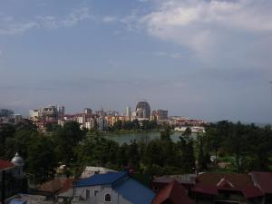 Apartment on 26 May 10/12, Apartments  Batumi - big - 14