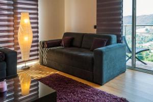 Studio Apartment Mila, Апартаменты  Копаоник - big - 17