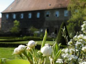 Hotel Schloss Zeilitzheim - Kolitzheim