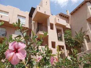 Apartment Murcia 33, Apartments  Torre-Pacheco - big - 2