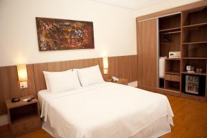 Premier Parc Hotel, Hotely  Juiz de Fora - big - 27