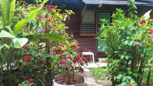 Secrets Cabins on Negril Beach