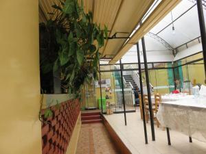 Hospedaje Del Pilar, Inns  Lima - big - 35