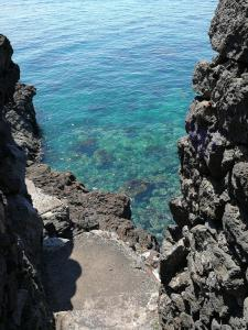 Il Giardino Dei Limoni, Bed and breakfasts  Aci Castello - big - 1