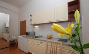 Cimburkova apartments, Apartmanok  Prága - big - 3