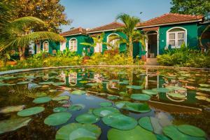 Aquatica Resorts and Spa