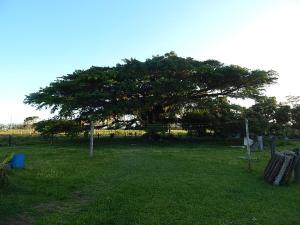 Fazenda Pousada da Lagoa, Vendégházak  Arroio do Sal - big - 21