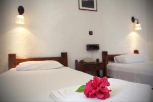 Hotel - Apartments Delfini, Hotely  Kissamos - big - 2