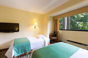 Single Room with Four Single Beds - Non-Smoking