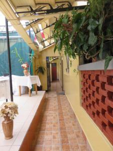 Hospedaje Del Pilar, Inns  Lima - big - 40