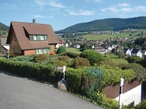 One-Bedroom Apartment with Mountain View in Baiersbronn/Mitteltal, Apartments  Baiersbronn - big - 18