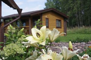 Holiday Home Tihotut, Penziony  Sortavala - big - 65