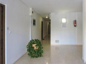 Two-Bedroom Apartment in Nerja, Appartamenti  Nerja - big - 6