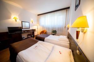 Best Western Central Hotel, Hotels  Arad - big - 3
