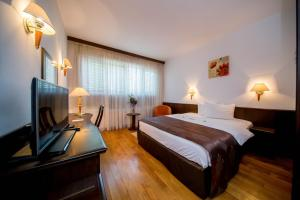 Best Western Central Hotel, Hotels  Arad - big - 9