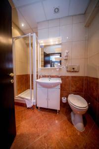 Best Western Central Hotel, Hotels  Arad - big - 11