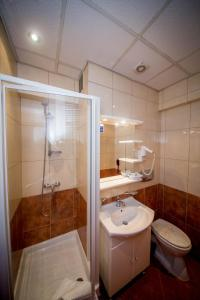 Best Western Central Hotel, Hotels  Arad - big - 12