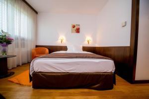 Best Western Central Hotel, Hotels  Arad - big - 15