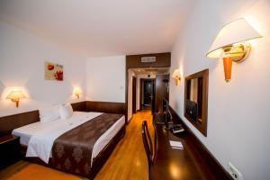 Best Western Central Hotel, Hotels  Arad - big - 16