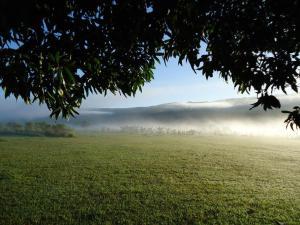 Pousada Encantos do Cerrado, Pensionen  Delfinópolis - big - 32