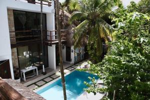 Residencia Gorila, Apartmanhotelek  Tulum - big - 89