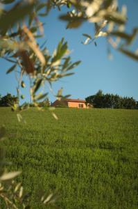 Agriturismo Fossederi, Farmy  Pieve di Santa Luce - big - 45