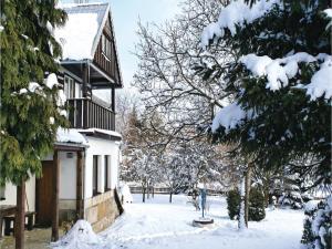 4 hvězdičkový chata Holiday home Jilove u Drzkova Jílové u Držkova Česko