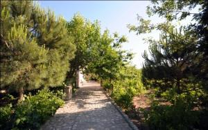 Kemerbag 29 Guest House, Bed & Breakfasts  Bozcaada - big - 31